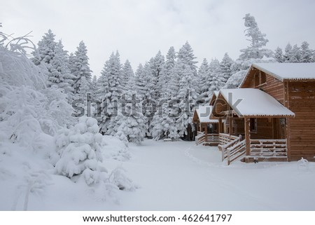 Bursa, Uludag and chalets winter images.