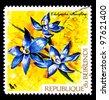 BURUNDI - CIRCA 1973: A stamp printed in Republic of Burundi shows tropical flowers (Chelymitra Pauciflora), circa 1973 - stock photo