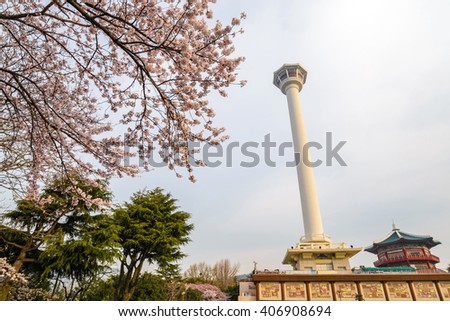 Busan Tower with cherry blossom, Busan, Korea - stock photo