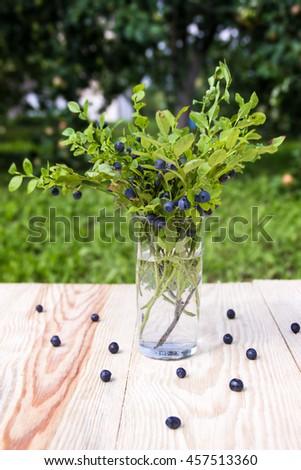 Bush blueberries in the glass. Summer still life. - stock photo