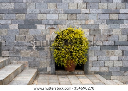 bush in pot decorates in stone wall with stone stair - stock photo