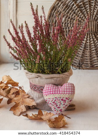 Bush of pink heather in a decorative bag next to the heart on the window - stock photo