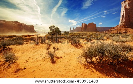 bushes in the orange sand of monument valley - stock photo