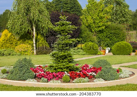 Bushes in the park, garden in summer , green plants.