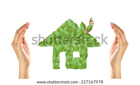 Business and Ecology concept. Hands with small green leaves house and butterflies.