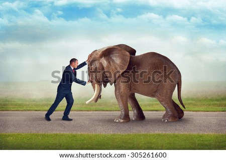 business challenge pushing against elephant obstacle contest of strength  - stock photo