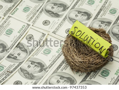 Business concept. Nest with solution word on money background. Focus on nest