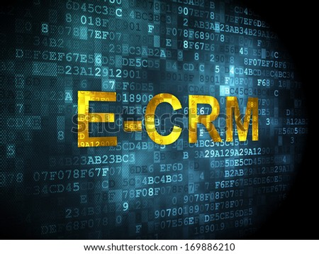 Business concept: pixelated words E-CRM on digital background, 3d render