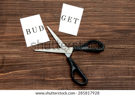 Business concepts, budget cut - stock photo