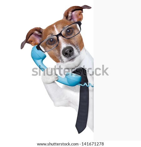 business dog on the phone behind a blank placard - stock photo