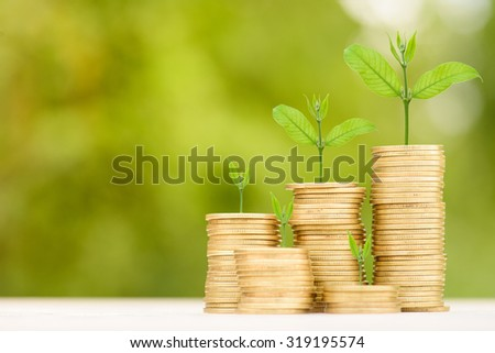 Business Finance and Money concept, Money Gold coin stack growing graph with green bokeh background;Trees growing on gold coin - stock photo
