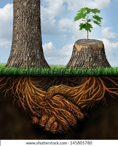 Business help and support concept as a tall tree next to a sick stump with a new growth of hope emerging as teamwork with the roots shaped as a handshake providing the strength for success. - stock photo