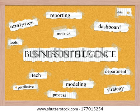 Business+Intelligence