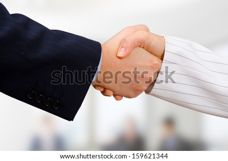 Business man and business woman shaking hands. - stock photo