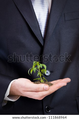 Business man holding a small plant - stock photo