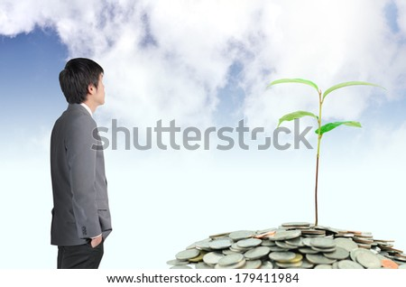 Business man looking tree growing on money coins on sky background in success business concept