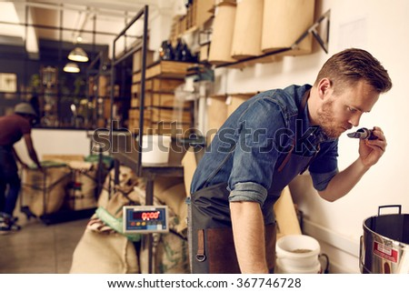 Business owner checking the aroma of freshly roasted coffee bean - stock photo