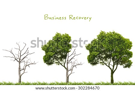 Business recovery concept with trees - stock photo