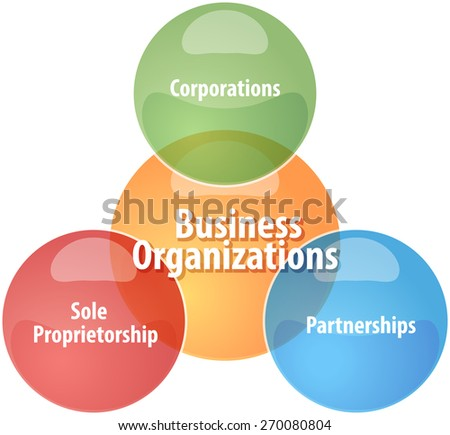 business strategy concept infographic diagram illustration of business organizations types - stock photo