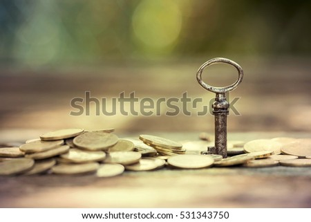 Business success - key and money coins