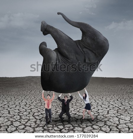Business teamwork is lifting elephant on dry ground with grey sky - stock photo