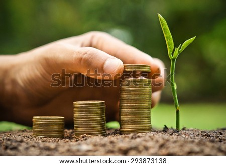 Business with csr practice / hand giving coins to stacks of coins in graph shape with a young plant - stock photo