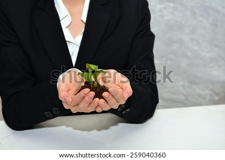 Business woman holding a young plant with both hands