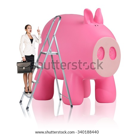 Business woman rises up on the stepladder near big piggy bank isolated on white - stock photo