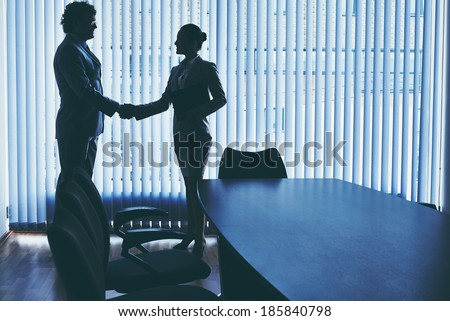 Businessman and businesswoman handshaking in office - stock photo