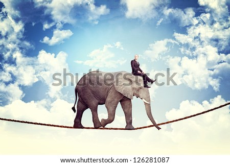 businessman and elephant walk on rope