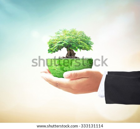 Businessman hand holding big tree with a green earth globe of grass on blur abstract sunset background. , Ecology, World Environment Day, Insurance Agent, Corporate Social Responsibility, CSR concept. - stock photo