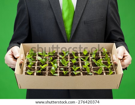 Businessman holding box with seedlings Environment protection concept - stock photo