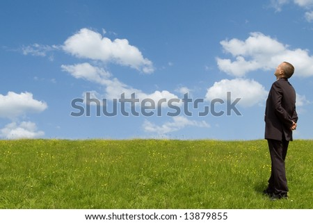 businessman in suit on grass field