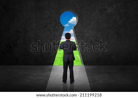 businessman looking key hole on old grunge black wall against green grass field and bright blue sky background - stock photo
