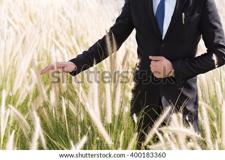 Businessman standing in a field and hand touching the tall grass. - stock photo