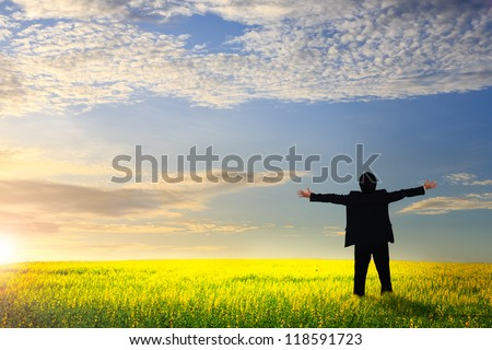 Businessman standing on a meadow with raised hands and looking to a horizon
