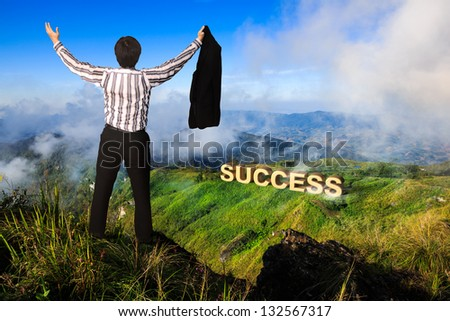 Businessman standing on a peak at mountain, Success in business concept