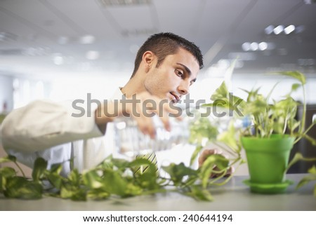Businessman Tending to Plant in Office - stock photo