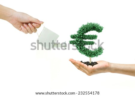 Businessman watering a tree with euro money