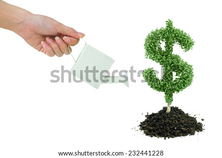 Businessman watering a tree with US dollar sign - stock photo