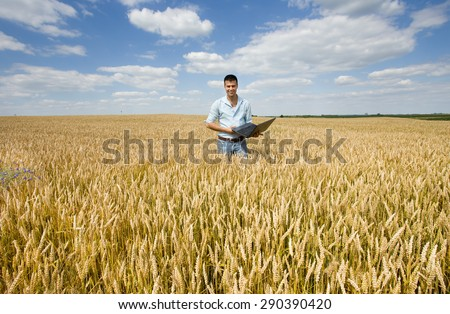 Businessman with laptop standing in ripe wheat field