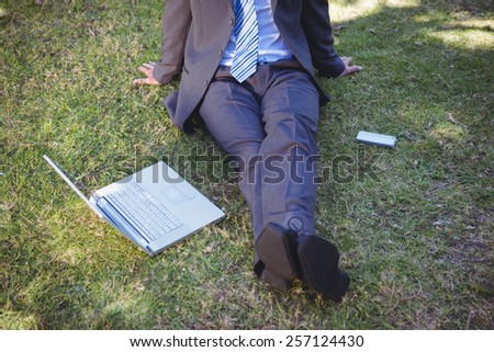 Businessman working in the park on a sunny day
