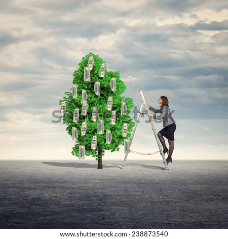 Businesswoman climbs the stairs to collect money from the money tree. - stock photo