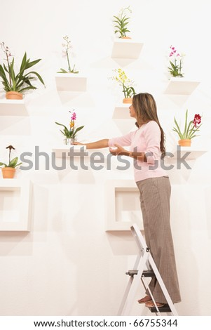 Businesswoman putting potted flowers on their shelf - stock photo
