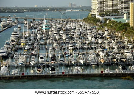 Busy boat marina in Miami Beach, Florida
