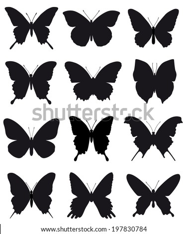 Butterflies, black silhouettes on white background - stock photo