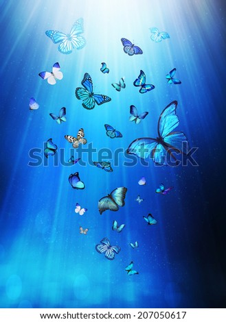 Butterflies flying on mystical blue background