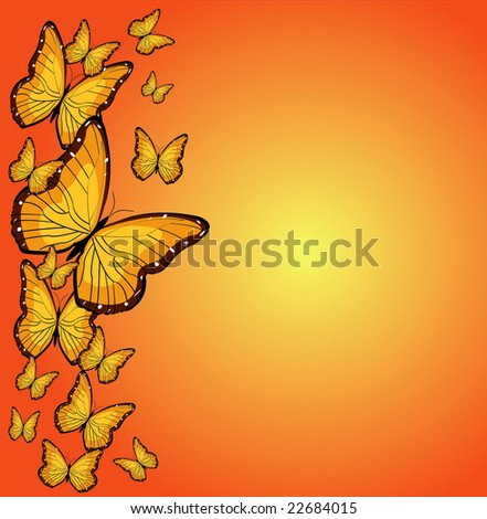 butterfly border illustration with sun