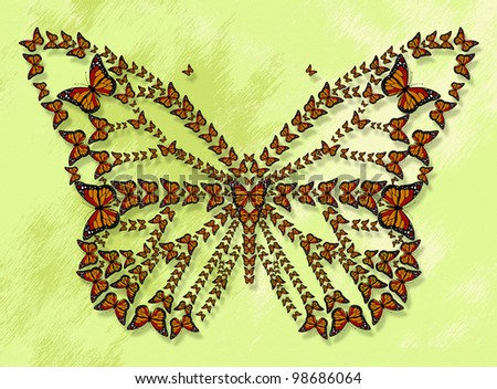 butterfly by butterflies - stock photo