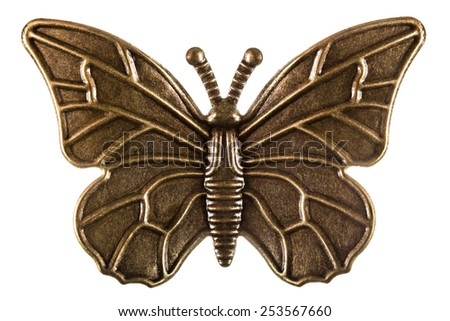 Butterfly, decorative element, isolated on white background - stock photo
